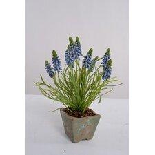 Faux Grape Hyacinth In Clay Pot