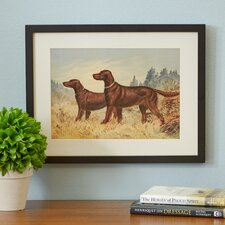 Irish Setter II by Alexander Pope Framed Painting Print