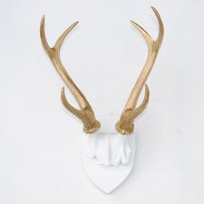 Large Faux Taxidermy Antler Rack Wall Décor