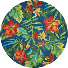 Covington Tropical Orchid Azure/Forest Green Area Rug