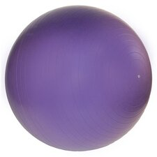 "26"" Professional Exercise Ball"
