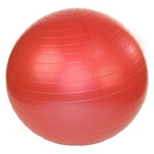 "18"" Stability Exercise Ball"