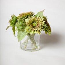 "Italian Sunflowers in 5"" Clear Glass Jar"