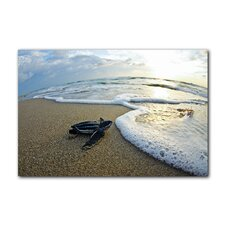 'Turtle' Leatherback Wave Watch by Christopher Doherty Photographic Printt on Wrapped Canvas