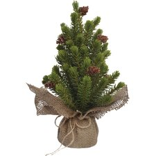 Potted Pine Tree in Burlap Sack