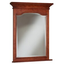 Cambrian Framed Mirror