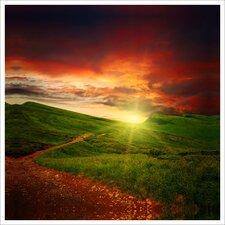 Green Path Photographic Print on Vinyl