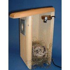 Backyard Birdhouse with Camera