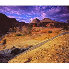 Limited Edition 'High Quality Nature Zion National Park' by Kevin O'Connell Photographic Print