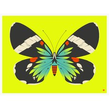 Limited Edition 'Blue Moth (on Yellow)' by Bee Things Graphic Art