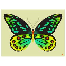 Limited Edition 'Birdwing Butterfly' by Shay Ometz and Jeff Barfoo Graphic Art