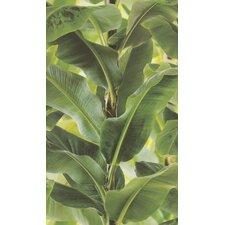 "African Queen II 33' x 20.5"" Tropical Leaf Print Wallpaper"