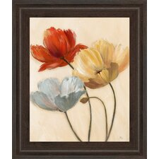 Poppy Palette II by Nan Framed Painting Print