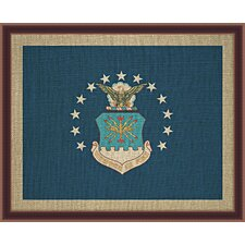 Air Force Framed Graphic Art