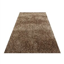 Shaggy Modern Brown Area Rug