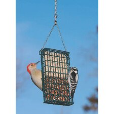 Double Suet/Seed Cake Bird Feeder