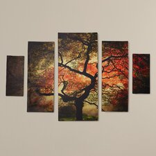 """""""Japanese"""" by Philippe Sainte-Laudy 5 Piece Photographic Print on Wrapped Canvas Set"""