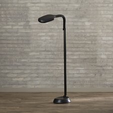 "Warner 55"" Floor Lamp"