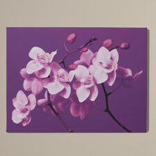 West Orchid Painting Print on Canvas
