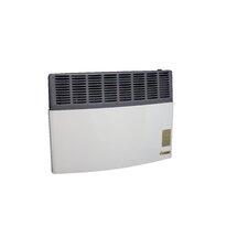 17,000 BTU Natural Gas Direct Vent Heater