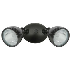 Two Headed Flood Light
