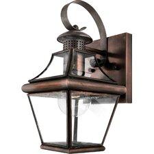 Carleton 1 Light Wall Lantern