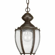 1 Light Outdoor Hanging Pendant