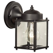 Essentials 1 Light Wall Lantern