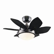 "24"" Quince 6 Blade Ceiling Fan"