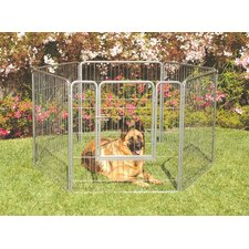 Courtyard Exercise Galvanized Steel Yard Pen