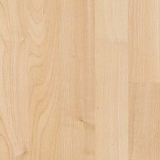 "Festivalle Plus 8"" x 47"" x 7mm Maple Laminate in Northern Maple"
