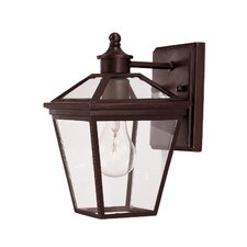 Ellijay 1 Light Wall Lantern