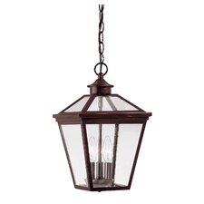 Ellijay 3 Light Outdoor Hanging Lantern