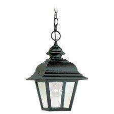 Bancroft 1 Light Outdoor Hanging Lantern