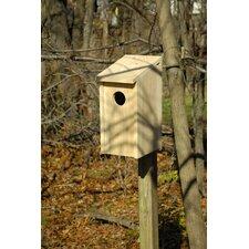 Screech Owl Birdhouse