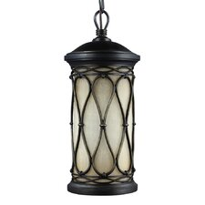 Wellfleet 1 Light Outdoor Pendant