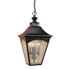 Homestead 4 Light Outdoor Hanging Lantern