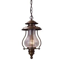 Wikshire 1 Light Outdoor Hanging Lantern