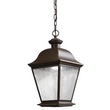 Mount Vernon 1 Light Outdoor Hanging Lantern