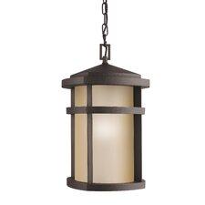 Lantana 1 Light Outdoor Hanging Lantern