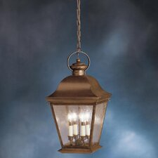 Mount Vernon 4 Light Outdoor Hanging Lantern