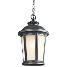 Ralston 1 Light Outdoor Hanging Pendant