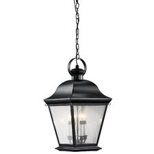 Mount Vernon 4 Light Outdoor Hanging Pendant