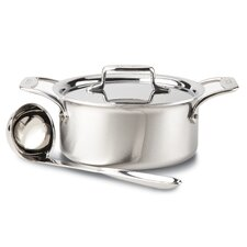 Brushed Stainless Steel 3-qt. Soup Pot with Lid and Ladle
