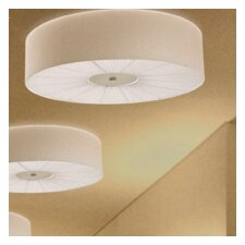 Skin Ceiling Light (Incandescent)