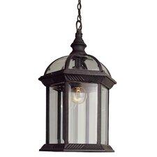Outdoor 1 Light Hanging Lantern