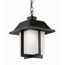 Pagoda Cap 1 Light Outdoor Hanging Lantern