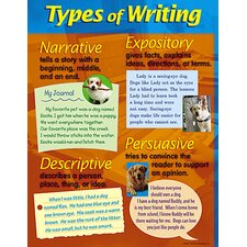 Types of Writing Chart (Set of 3)