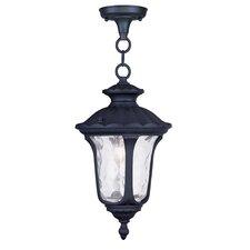 Oxford 1 Light Outdoor Hanging Lantern