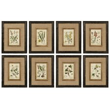Horticultural Framed Graphic Art (Set of 8)